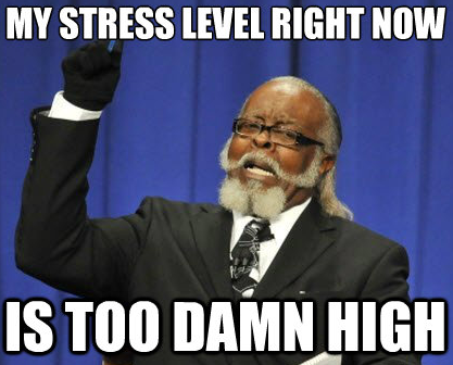 entrepreneur stress level